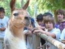 Fuimos al Zoo...